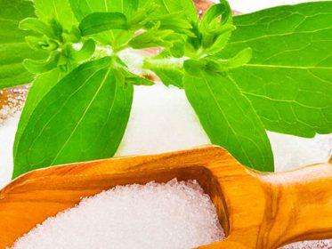Dolcificante naturale: la Stevia
